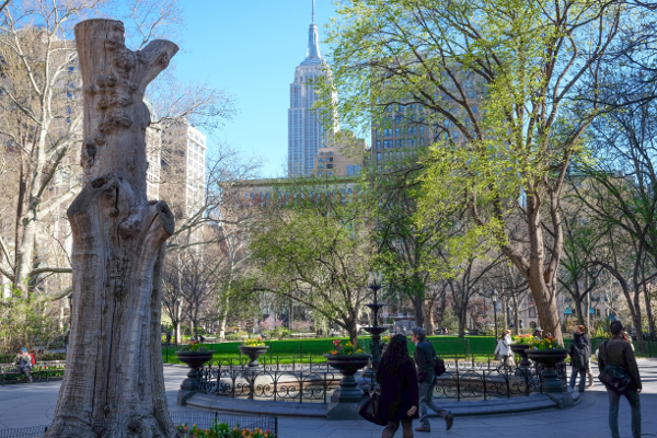 madison-square-park-manhattan-nyc