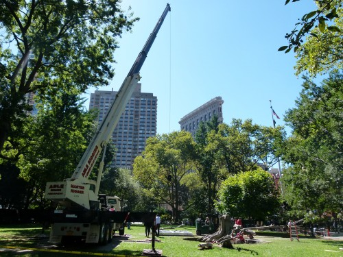 giuseppe penone ideas of stone in madison square park