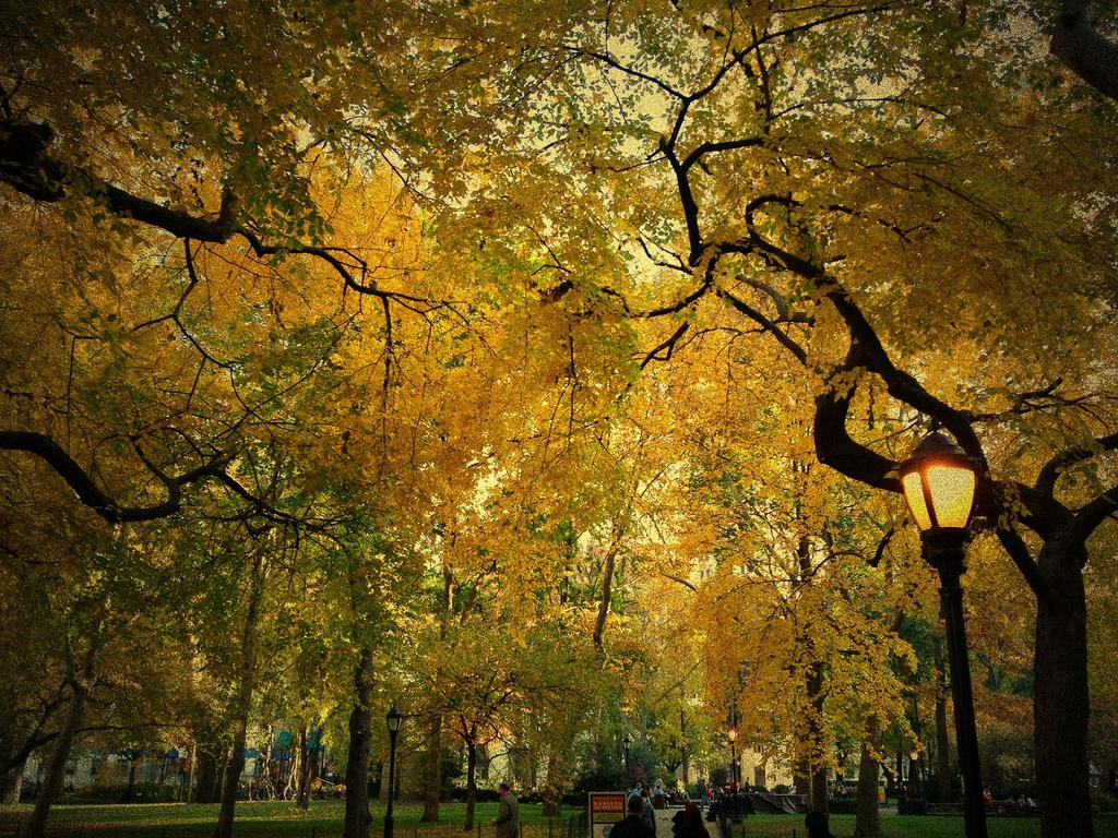 Madison Square Park turns 200 years old this fall!