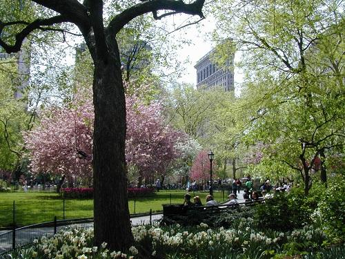 Madison Square Park celebrates their 200th anniversary with the Mad Sq 200 festival!