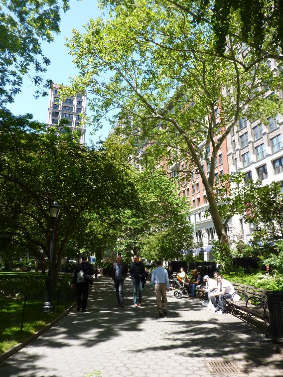 ExperienceNoMad salutes Madison Square Park on their 200th year!