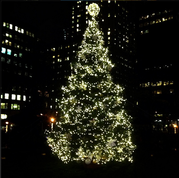 Madison Square Park greeted the Holidays this past week with their annual Holiday treating lighting ceremony.