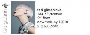Ted Gibson Hair Salon