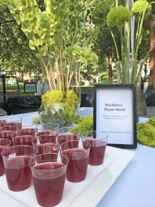 Madison Square Park blackberry-thyme shrub drink